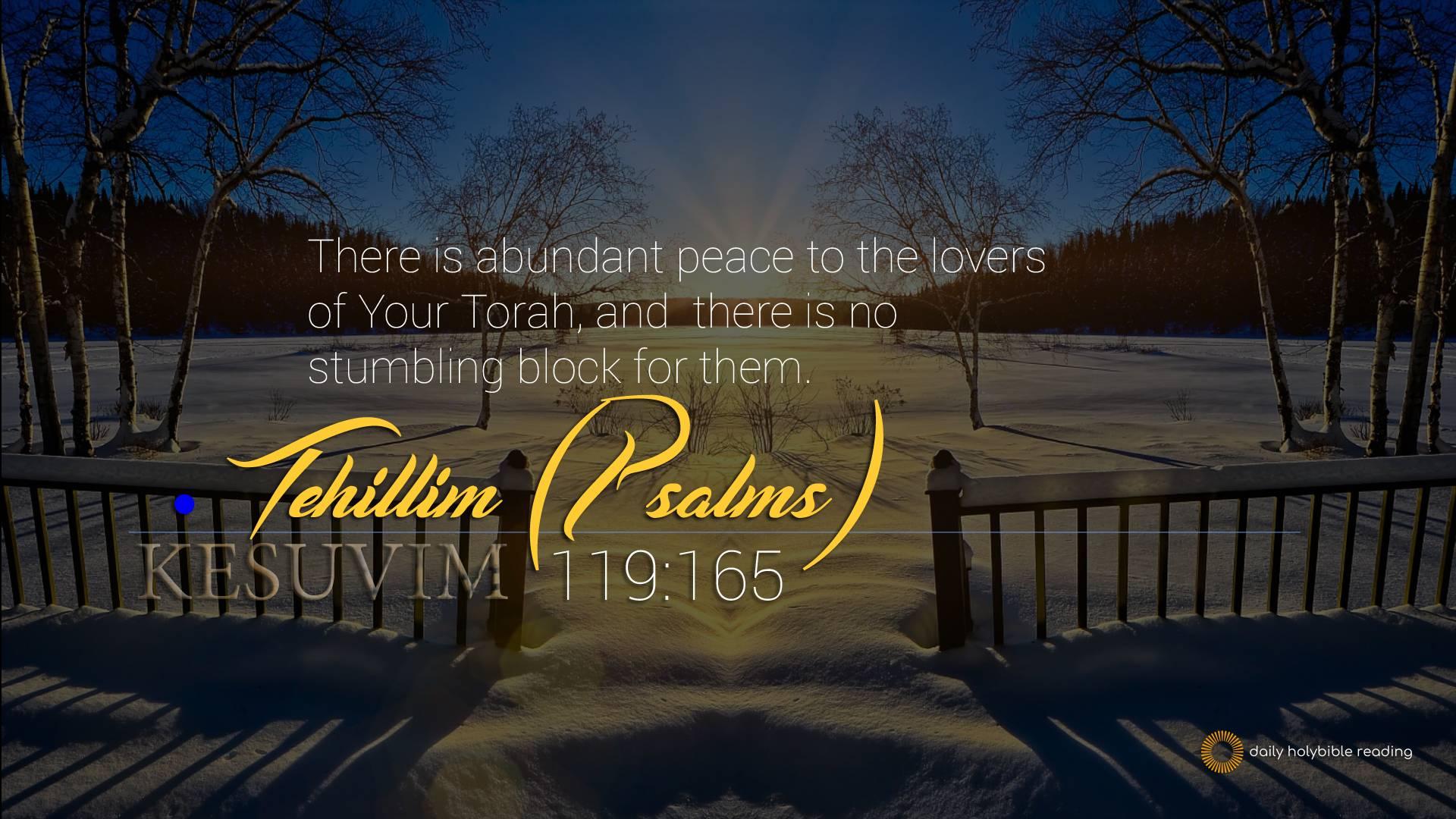 Tehillim 119 165 | This Is TRUTH